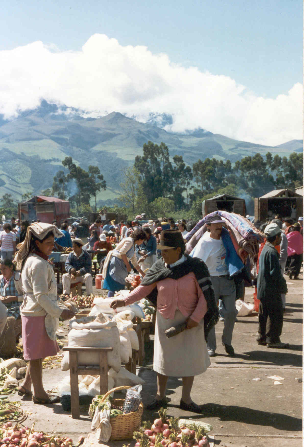 Food Market in Machachi, Ecuador (Photo by IUFRO)