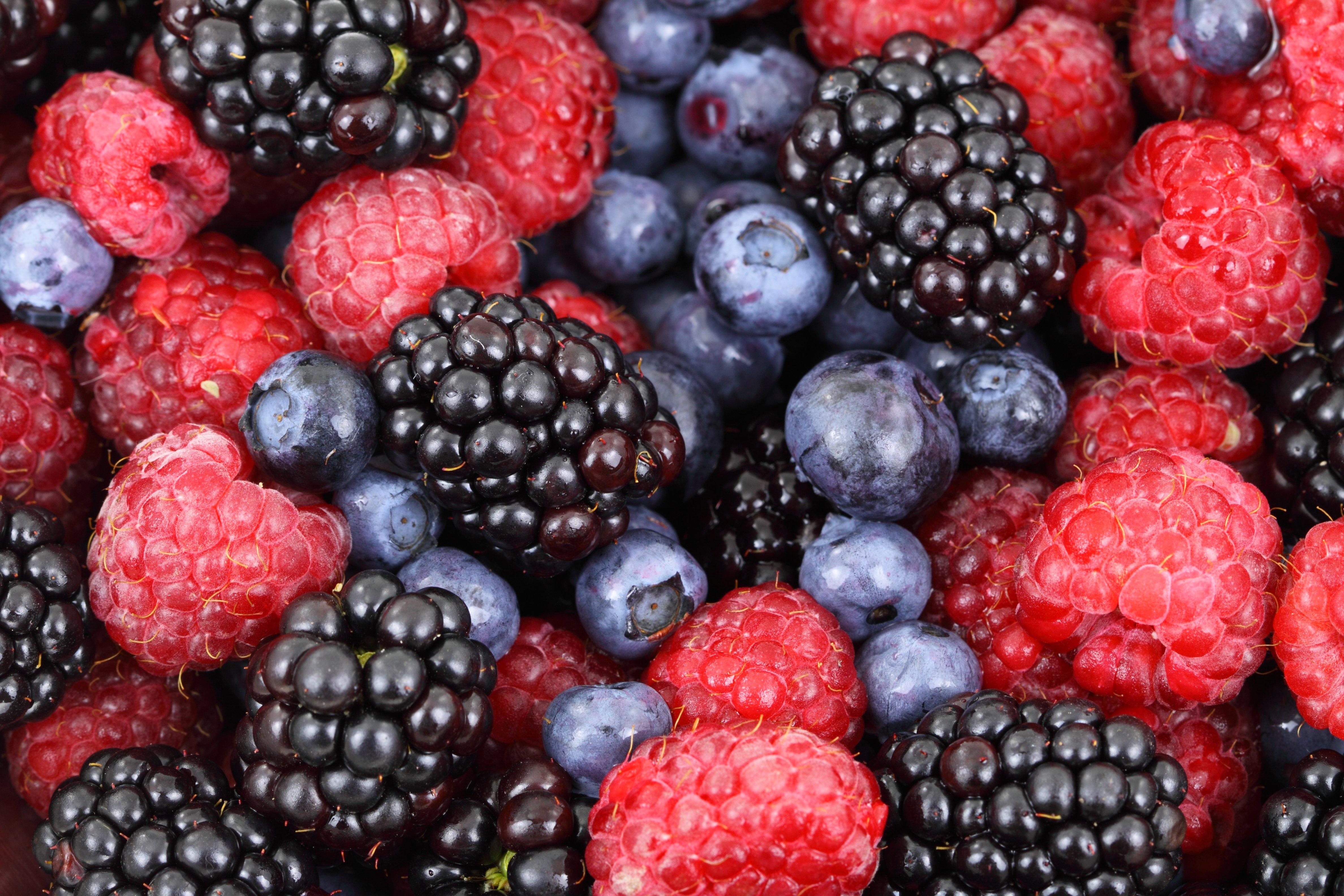 Forest berries (Petr Kratochvil)