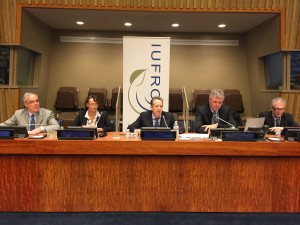 WFSE Side Event at UNFF11: Panelists. Photo by Alexander Buck