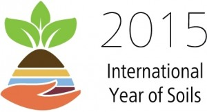 spotlight33-forests-soils-water-int-year-of-soils